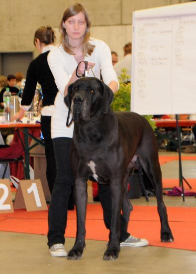 Belphegor sacré champion de Suisse